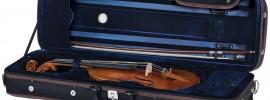 Cremona SV 800 violin case