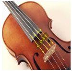 G, D, A, E strings