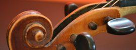 violin focus