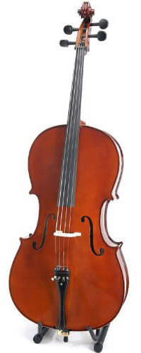 5 Differences Between Violas And Violins