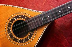 Best Mandolin Strings: Guide
