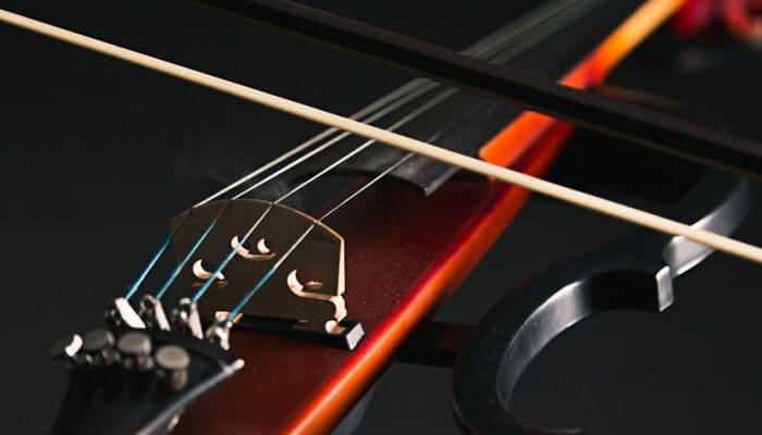 Best Electric Violin Buying Guide