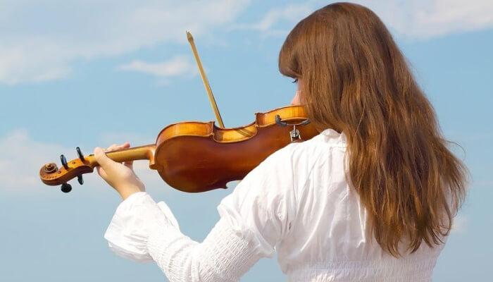 16 best violin brands 32 best beginner violins for 2018
