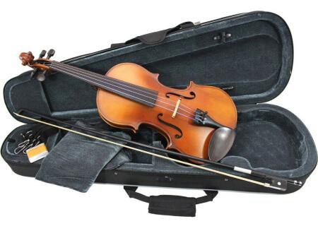 Primavera 200 Student Violin Outfit