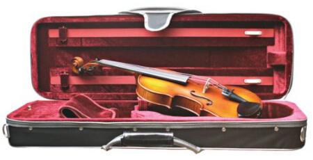 Primavera Loreato Intermediate Violin Outfit