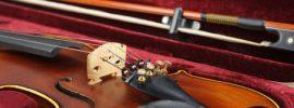 best violin case guide