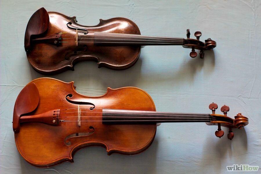 Image result for violin and viola