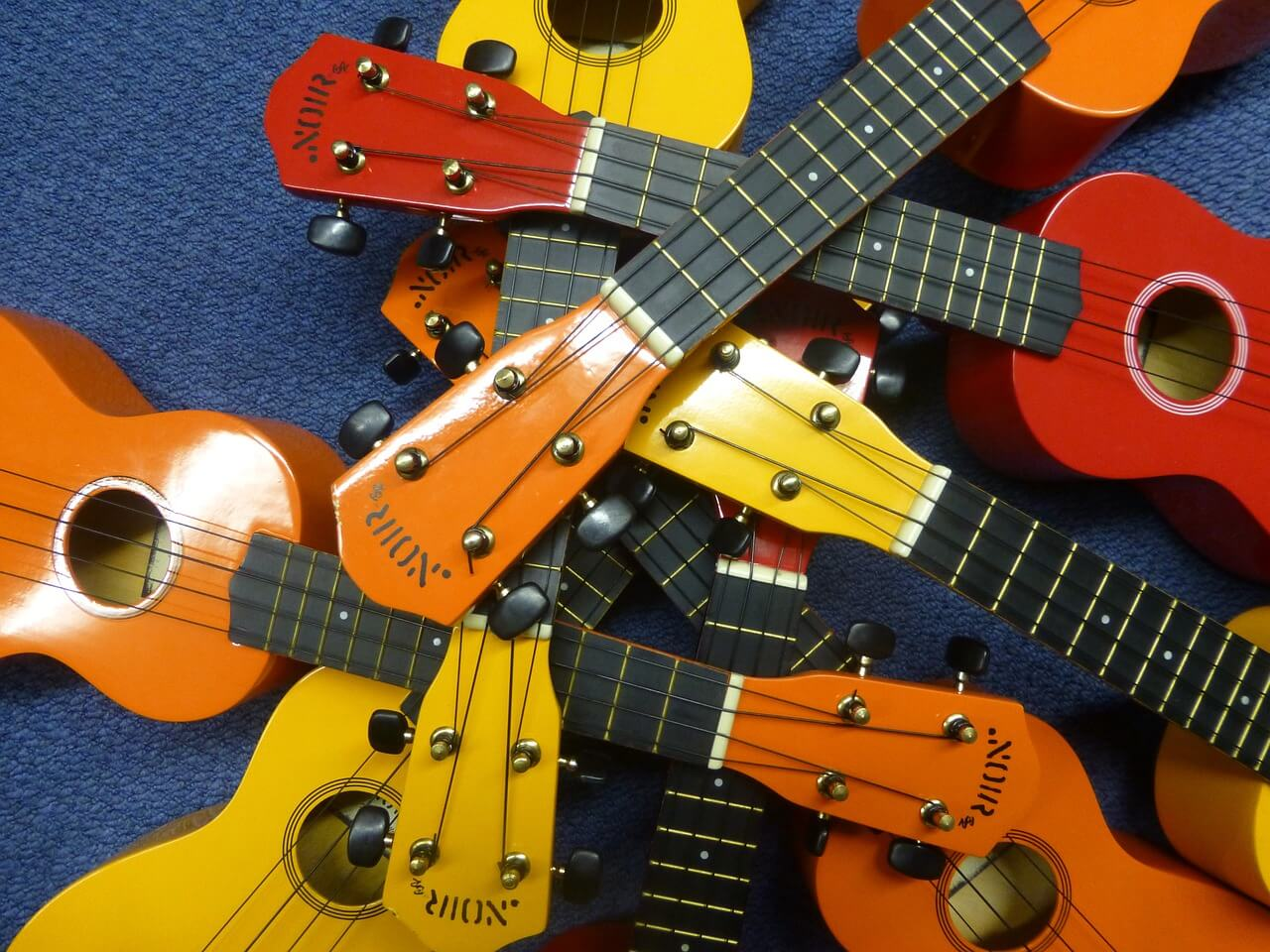different ukulele