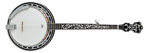 Ibanez B200 5-String Banjo