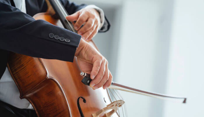 Top 10 Best Cello Brands: Beginner & Student Cello Reviews