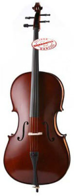 D'LucaMeister Handmade Ebony Fitted Cello