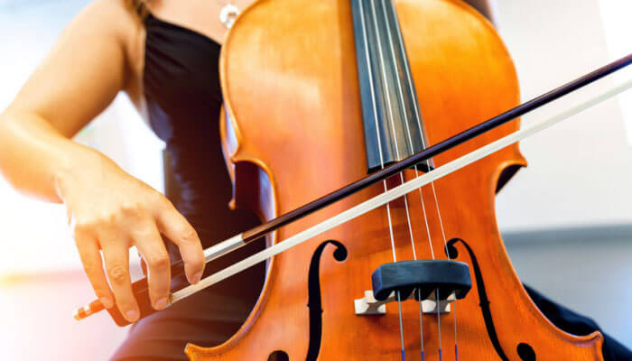 Best Cello Bow: The 2018 Guide & Cello Bow Reviews