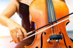 Choosing The Best Cello Bow for Beginners and Students