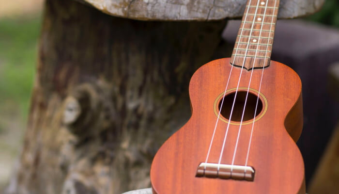 best concert ukulele reviews