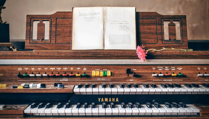 Top 10 Most Difficult Musical Instruments - Listontap