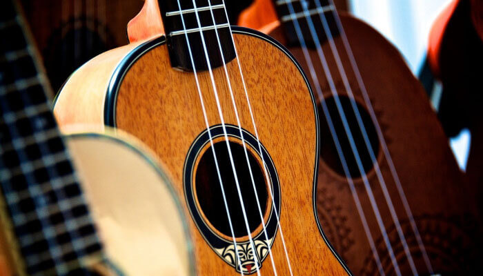 ukulele brands guide